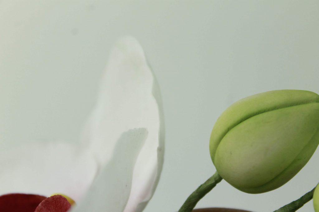flor-tarta-fondant