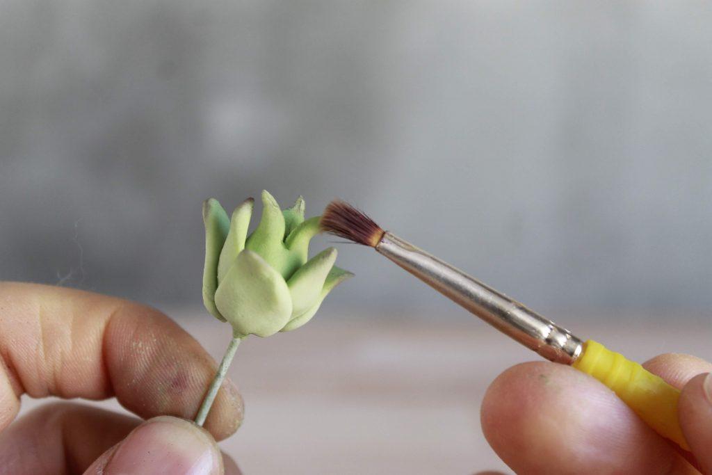 como-hacer-plantas-crasas-fondant