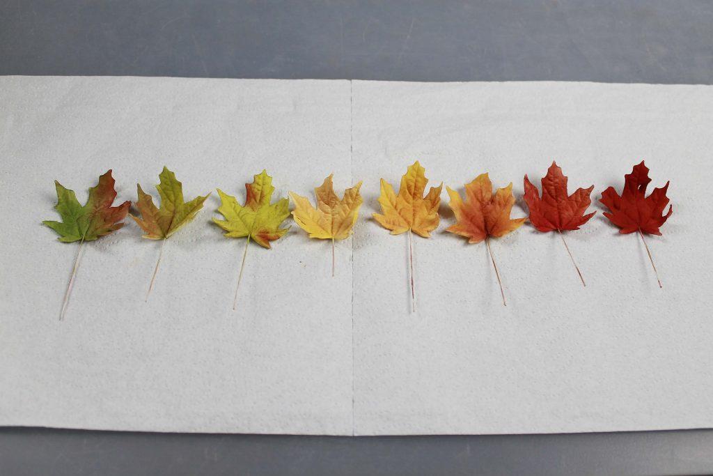 hojas-otonales-pasta-azucar